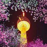 大邱(テグ)で観光ならイーワールド(E-WORLD)!場所や行き方は?桜と光の祭りは必見!