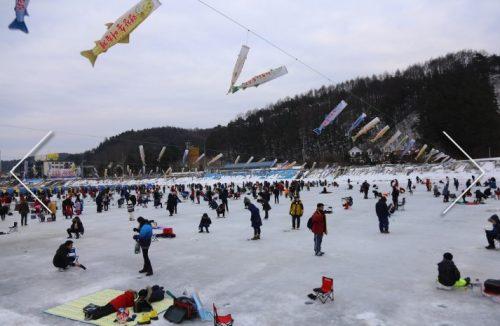 出典:http://www.festival700.or.kr/